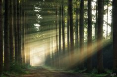 Light from the Right by Martin Podt on 500px