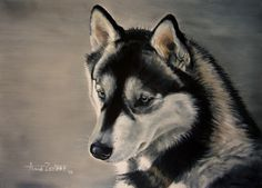 Husky Baby Blue Eyes - Siberian Husky oil dog painting, painting by artist Anne Zoutsos