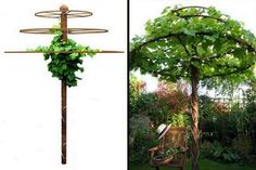 "How's this for a ""green"" umbrella to sit under on hot days?  We've got a full album of trellises made from recycled materials  on our site at http://theownerbuildernetwork.co/aehj  Would you like to have one of these in your backyard?"