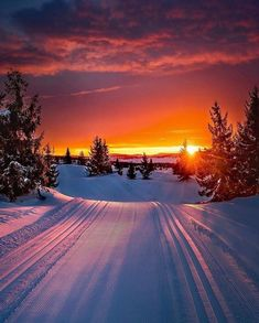Sunset blazing as you ski through perfect tracks 😍 Oppland, Norway. 📷 Jan-Petter Dahle Source by wildmerch Beautiful Sunset, Beautiful World, Beautiful Places, Beautiful Pictures, Beautiful Winter Scenes, Pretty Photos, Winter Photography, Landscape Photography, Nature Photography