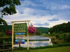 Woods Market Garden...Brandon, Vermont, Route 7... I purchased many bedding plants and lots of fresh veggies and fruit at this place.