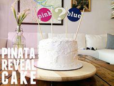 pinata reveal cake! // DIY