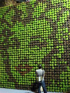Mao Marilyn and the Big Garden @ Singapore Garden Festival Vertical Planting, Vertical Succulent Gardens, Vertical Garden Design, Succulents Garden, Vertikal Garden, Vertical Green Wall, Singapore Garden, Green Facade, Garden Wall Art