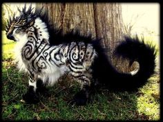 15 Majestic Mythical Creatures Up For Adoption ME STILL WANTZ THEM ALL!!!!
