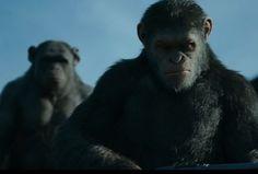 La guerra comienza en tráiler de War for Planet of the Apes   El Puntero