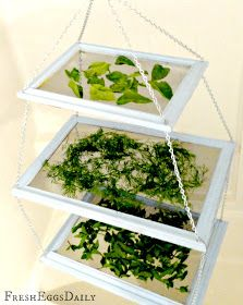 repurposed picture frame herb drying rack