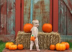 Carrie Saindon Photography: One Year Old Lil' Pumpkin {Frisco TX Child Photog. Fall First Birthday, Fall 1st Birthdays, Pumpkin 1st Birthdays, First Birthday Pictures, 1st Boy Birthday, Fall Baby Pictures, Boy Pictures, Baby Photos, Boy Photo Shoot