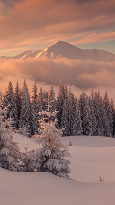 Beautiful winter landscape - wallpapers for iPhone and smartphone - wallpapers -. - Beautiful winter landscape – wallpapers for iPhone and smartphone – wallpapers – - Winter Pictures, Nature Pictures, Beautiful Pictures, Landscape Wallpapers, Winter Photography, Nature Photography, Photography Wallpapers, Iphone Photography, Landscape Photography