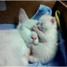 :-) Mama and baby
