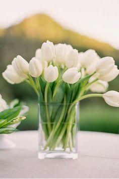 bouquet tulipe blanche