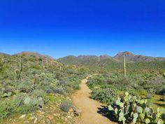 The Dixie Mine Trail