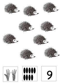 telblad Jip en Janneke 9 Woodland Creatures, Hedgehogs, Schmidt, Hair Accessories, Tattoos, School, Drawings, Illustration, Scouts