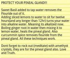 detox pineal gland naturally …I don't know about the crystal's, but the natural detox methods seem legit. Natural Detox, Natural Cures, Natural Healing, Alternative Health, Alternative Medicine, Herbal Remedies, Health Remedies, Health Tips, Health And Wellness