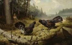 Ferdinand von Wright: Taistelevat metsot