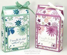 Stampin' Up! Demonstrator Pootles - Tall Wide Box using Blooms & Bliss