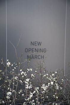 New installation for NYC Flagship store - pear, quince, and cherry blossoms.