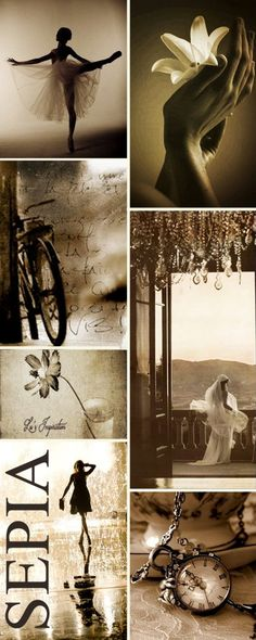Lu's inspiration for Sepia. Definite credit for her for creating this lovely image!