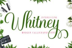 Whitney is a delicate, elegant and flowing handwritten font. It has beautiful and well balanced characters and as a result,... Handwritten Fonts, Calligraphy Fonts, All Fonts, Lettering, Script Fonts, Modern Calligraphy, Typography, Web Banner Design, Web Design