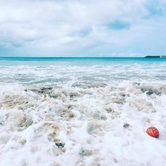 Doesnt it seem to you asked Madame Bovary that the mind moves more freely in the presence of that boundless expanse that the sight of it elevates the soul and gives rise to thoughts of the infinite and the ideal? #ocean #sea #waves #sand #beach #seaside #bluesky #cloudy #turquoise #peace #quiet #silence #calmness #peaceful #freedom #soundofnature #soultherapy #simplicity #apollobay #victoria #australia by goksukaraguler http://ift.tt/1LQi8GE