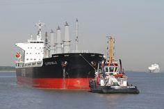 """Cargo Ship """"Clipper Belle"""""""