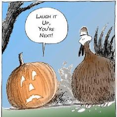 It's time for Thanksgiving jokes. Here is the collection of some funny thanksgiving pictures. It's also the time for Thanksgiving cards invitations so maybe Funny Thanksgiving Pictures, Thanksgiving Jokes, Thanksgiving Greetings, Autumn Pictures, Thanksgiving Blessings, Nature Pictures, Halloween Cartoons, Halloween Humor, Halloween Stuff