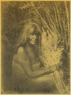 Here for your perusal is an original photograph of Hipah With Arrow-Brush. It was created in 1907 by Edward S. The photograph illustrates Maricopa Indian, three-quarter length portrait, sitting, facing right holding, arrow-brush stalks in hand. Native American Photos, Native American History, Native American Indians, Pima Indians, Native Indian, Historical Pictures, First Nations, Portrait, Photographs
