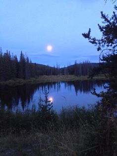 Fishing. Buck lake BC 2014