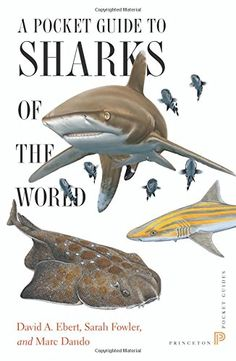 A Pocket Guide to Sharks of the World (Princeton Pocket Guides) by David A Ebert http://www.amazon.com/dp/0691165998/ref=cm_sw_r_pi_dp_-Qxgvb0J39ASD