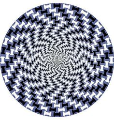 Inspirational, for ongoing graphic designing. Optical Illusion Gif, Cool Optical Illusions, Art Optical, Illusion Art, Eye Tricks, Mind Tricks, Op Art, White Art, Blue And White
