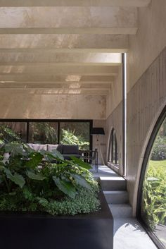 From the beginning, the architects wanted to not only preserve the vegetation but also to make it the main focus of the house. Amazing Architecture, Architecture Design, Unique Floor Plans, Basement Floor Plans, Porch And Balcony, Garden Stairs, Stucco Walls, House In Nature, Modern Style Homes