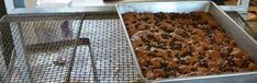 Amish Chocolate Chip Oatmeal Bars | Amish Recipes Oasis Newsfeatures