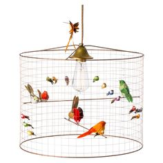 This+beautiful+French-made+lamp+shade+is+inspired+by+an+aviary+and+has+various+sized+life-like+decorative+birds+adorning+the+shade. The+wire+shade+is+made+from+light+but+strong+copper+roasting+and+the+decorative+birds+are+made+from+real+feathers. This+shade+is+a+real+show+piece+for+any+room+and+takes+a+maximum+40W+E27+screw+fitting+bulb+(not+included).
