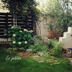 """女性で、4LDKのしゃれとんしゃあ会/アンティークレンガ/RC九州支部/プロヴァンスに憧れて…/手作りの庭…などについてのインテリア実例を紹介。「アナベルがたくさん咲いてます ➚ (ૢ›◡ु‹⁎)♡ 今日もお仕事頑張ろ〜っと *✧₊(""""✪͡◡ू✪͡"""")」(この写真は 2014-05-31 08:05:51 に共有されました) Garden Paths, Garden Landscaping, Green Garden, Garden Styles, Plant Decor, Indoor Plants, Outdoor Living, Backyard, Exterior"""