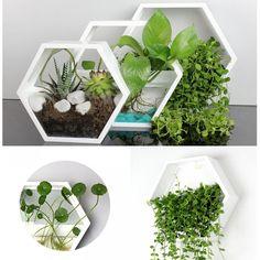 Simple Modern Hexagon Vase - All For Garden Plant Wall Decor, House Plants Decor, Decoration Plante, Decoration Design, Hanging Wall Planters, Garden Wall Planter, Pallet Planters, Hanging Terrarium, Wall Vases