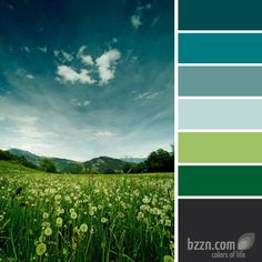 Love these colors together.  My kitchen is the green, I think I'll do my hallways in the blues