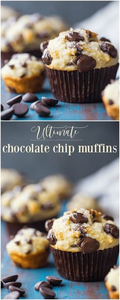 These chocolate chip muffins come out so fluffy and moist!  There's just the right amount of sweetness, and the recipe is so easy to make!  #chocolate #chocolatechip #muffins #easy #recipe #best #moist #mini #bakerystyle #homemade #simple #Greekyogurt #fromscratch #sourcream #blueberry #starbucks #quick #buttermilk #howtomake #fluffy #ultimate #soft #big #streusel #breakfast #onebowl via @bakingamoment