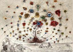 Argus - Salvador Dali - 1963 - etching on paper  Dear Salvador, I love you.