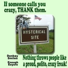 If someone calls you crazy, THANK them.