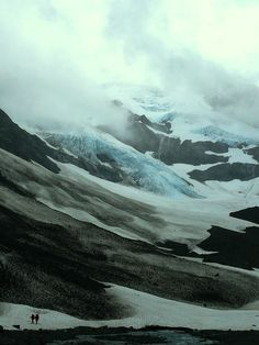 neuromaencer:  flickr.com → glacier by h.marie