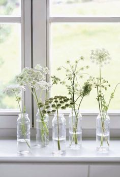 sill decoration: What do you put on a windowsill? - - Blumendeco Window sill decoration: What do you put on a windowsill? - - Blumendeco - Window sill decoration: What do you put on a windowsill? Ideas Florero, Queen Anne Lace, White Flowers, Beautiful Flowers, Simple Flowers, White Trees, Diy Flowers, Fresh Flowers, Deco Floral