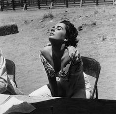 "Elizabeth Taylor sul set del film ""Il gigante"", nel 1955, in Texas (© Sid Avery/mptvimages.com)"