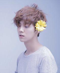 Luhan- EXO. He is so gorgeous omfg