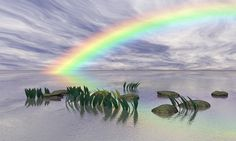 Rainbow List to discover new insights & dreams to be fulfilled & banish winter Photos Hd, Insight, Northern Lights, Nature, Waves, Rainbow, Clouds, Winter, Outdoor