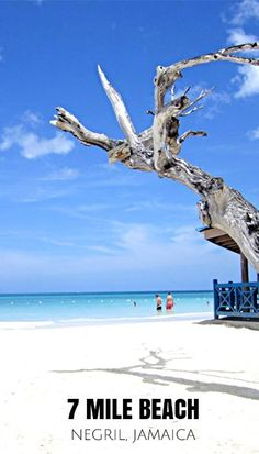 Negril, Jamaica | Known by tourists as 7-Mile Beach, this vast section of white sand paradise stretches from the Negril River on the south to Rutland Point on the north.