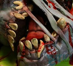 Some of the coolest zombie cakes and confections you've ever seen! Artisan Cake Company, Zombie Food, Themed Cakes, Halloween Themes, Sculpting, Carving, Vegetables, Zombie Cakes, Amazing