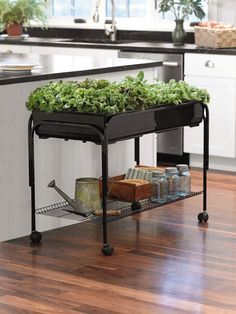 """Self-Watering Mobile Grow Cart, """"Perfect for salad greens, herbs and compact flowering plants.""""  (The price earns it an LOL; this is an idea to steal  do on the cheap!)"""