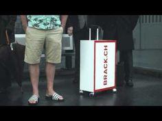 Brack.ch: Pack den Brack - marketing.ch - info@marketing