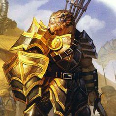 latest (256×256). Dragonborn Paladin captain