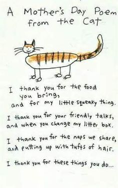 Mother's Day poem from the cat