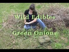 Wild Edibles: Identifying Wild Onions                                          180 different videos, different plants to forage for